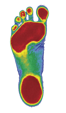 scanned 3D foot