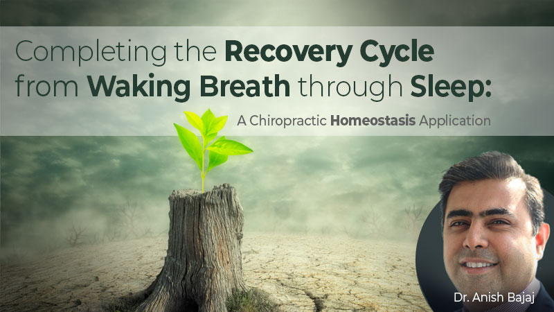 Completing the Recovery Cycle from Waking Breath Through Sleep: A Chiropractic Homeostasis Application