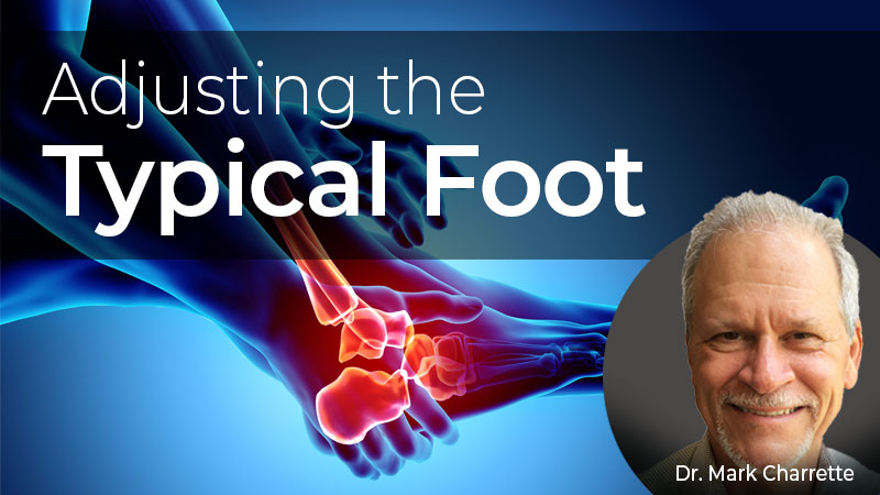 Adjusting the Typical Foot