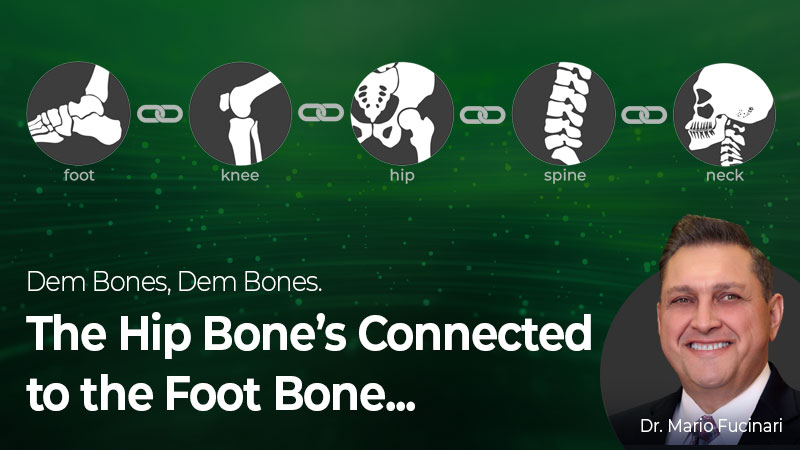 Dem Bones, Dem Bones. What, the Hip Bone's Connected to the Foot Bone